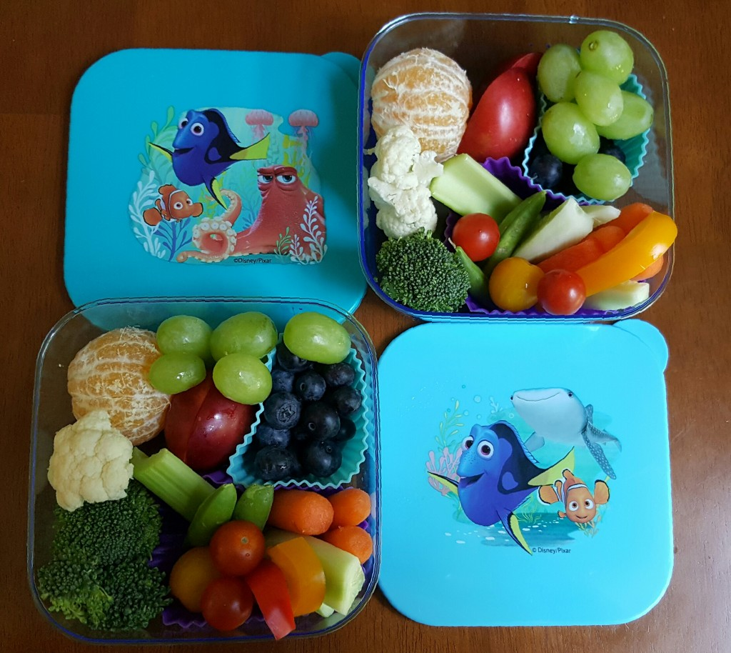 Dory_Healthy_Snack